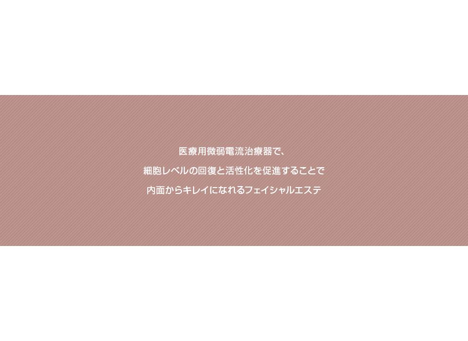 banner_salon02